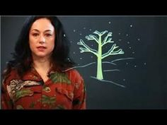 Drawing Education & More : How to Draw a Winter Tree Step by Step
