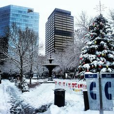 Winter Wonderland in Gore Park...photo by pinner Kevin Michael