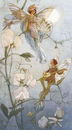 Fairies Midst Sweet Peas by Margaret Tarrant