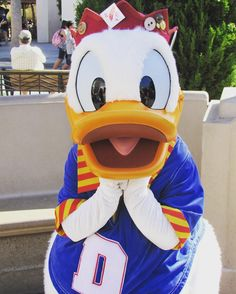 It's friday Me & this silly duck are all smiles today cause we will both be making an appearance at the parks today Have a great day everyone #disneycaliforniaadventure #donaldduck #disneycharacter #happiestplaceonearth #dlr #disneyfollow #disneyland #disneyworld #disneyphoto #disneyside #smile #cute #disney #disneygram #disneyaddict #disneyobsessed #friday #tgif #goodmorning by disneygoer_veee323