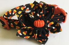 Candy Corn Halloween Flower Collar for Girl Dogs & Cats by KVSPetAccessories on Etsy Halloween Flowers, Girl And Dog, Candy Corn, I Shop, Dog Cat, Cats, Ivy, Sewing, Decor