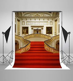 GRAND STAIRCASE 018 Wall Mural Backdrops Backgrounds 10X10 Digital Printed
