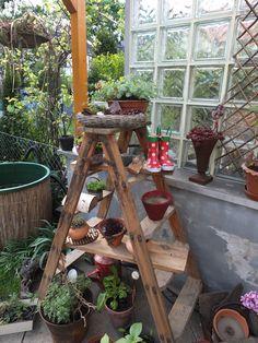 gartenfenster mein kleiner reihenhausgarten pinterest. Black Bedroom Furniture Sets. Home Design Ideas