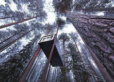 Treehotel by Thomas Sandell, Bertil Harstrom, Martin Cyren, Martin Videgard Hansen, and Bolle Tham » Yanko Design