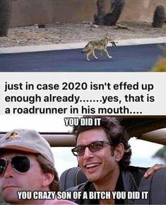Really Funny Memes, Stupid Funny Memes, Funny Relatable Memes, Haha Funny, Funny Cute, Funny Posts, Funny Stuff, Random Stuff, Funny Images