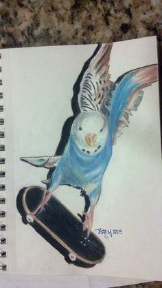 Jazzy's picture of a bird.