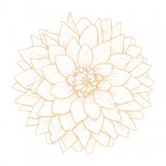This is about dahlia tattoos, dahlia tattoo images, meanings, symbolism, celebrities and more.