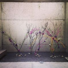 See our newest set of #ikebana installations now on view on Level 2 of the Oakland Museum. Here's peek of one of them. #OMCA #oaklandloveit by Oakla...