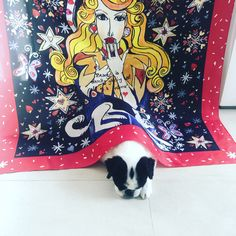 """Kate Padget-Koh  """"Winter : Patron Saint of Gucci with Nelson"""" With Nelson.   Adorable."""