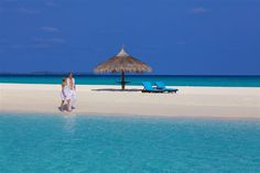 Hotel Kuredu Island Resort, recenze hotelu, dovolená a zájezdy do tohoto hotelu na Invia.cz Kuredu Island, Island Resort, Resort Spa, Tours, Travel, Viajes, Destinations, Traveling, Trips