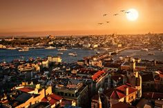 Living in Istanbul | OIP