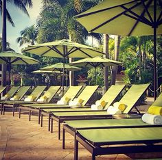 Beautiful picture of Tropitone Cabana Club Chaise Lounges and Outdoor Umbrellas from the Hard Rock in Hollywood, FL.