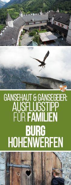 Ausflugstipp für Familien im Salzburger Land: Burg Hohenwerfen: Mittelalter pur, Adler, Gänsegeier, Uhus - Gänsehaut garentiert. Familientipp, Ausflugstipp, Reisen mit Familie