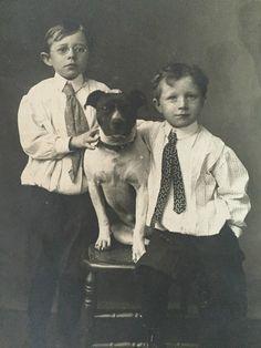 1905 @KaufmannsPuppy