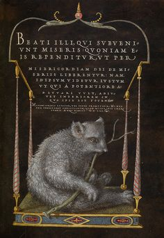 A Sloth: Joris Hoefnagel, 1561-1562; illumination added 1591-1596