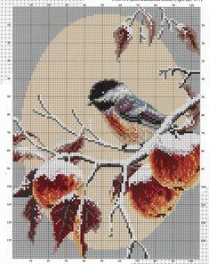Bird on Branch in Winter