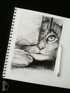 #drawing #art #cat #white #black