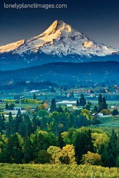 Panorama Point, Hood River, Oregon