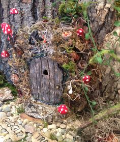 "Natural Fairy Entryway, Miniature Garden, Fairy, Gnome, Elf, Troll, Hobbit, Door that Opens. Indoors/Outdoors. Approx 7"" x 7"" x 2"" deep. on Etsy, $55.00"
