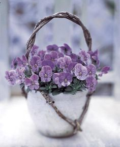 Adorable little basket of violas.