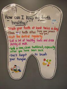 teeth anchor chart