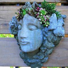 Uma bela face com cabelos de suculentas para enfeitar o jardim.