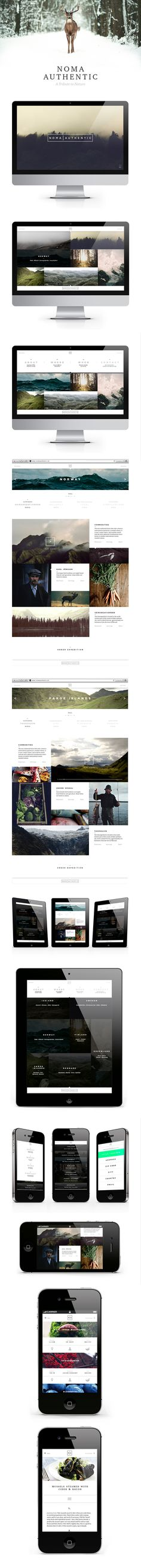 Noma Authentic.  I love the clean layout and photos of nature in this design.  It's very appealing to me and works well with their concept of having people want to learn more about commodity, hunting and fishing in  Scandinavia.