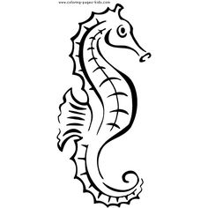 Seahorse coloring page found on Polyvore