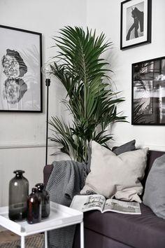 Peut-on vivre confortablement dans un tout petit appartement? - PLANETE DECO a homes world