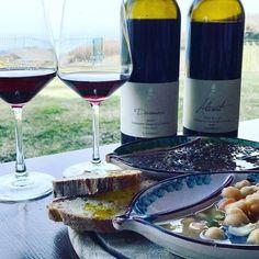 Red passion  thanks a lot to food blogger @cimediweb for this amazing image!  #etna #winelover #instasicilia #instasicily #igsicilia #vineyard #sicilia #sicily #winery #vigneto #winerytour #gambinowine #gambinovini #winetasting #winetourism #vinery #cellar #grapewines #vendemmia #redwine #whatsicilyis #igcatania #igsicilia #igsicilia #sicilianinsta #winemakers #ilovewine #wineoclock #grapevines