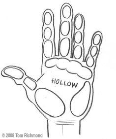 Principle Areas of Hand