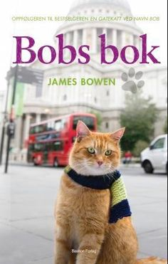 Bob Cats In this exclusive interview, James Bowen talks about how much A Street Cat Named Bob has changed his life. - In this exclusive interview, James Bowen talks about how much A Street Cat Named Bob has changed his life. Michael Scott, Bobcat Pictures, Street Cat Bob, Savannah, Bob Books, Read Books, Cat Names, Domestic Cat, Exotic Pets