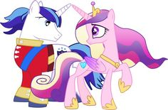 shining armor and princess cadence (married)