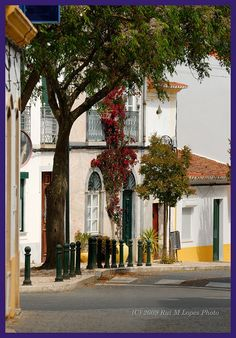 FERREIRA DO ALENTEJO  Portugal