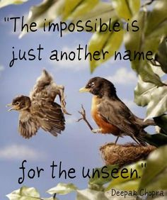 """The impossible is just another name for the unseen.""  --Deepak Chopra  