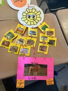 """As part of my Food Chain and Web unit I had my kids complete a """"Food Chain CHAIN."""" They choose a biome and created a project describing th. Science Lessons, Teaching Science, Science Education, Science For Kids, Life Science, Food Chain Activities, Science Activities, Science Projects, Educational Activities"""