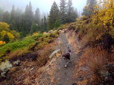 10 Hiking Spots In Nevada