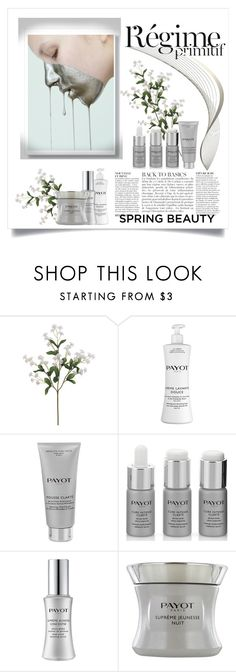 """""""R'egime Payot"""" by conch-lady ❤ liked on Polyvore featuring beauty, Anja and Payot"""