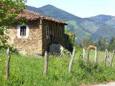 Vor mir strecken sich hohe Berge in den Himmel und sattgrüne Wiesen bedecken die Täler. Auf einer Weide irgendwo in der Ferne müssen Kühe grasen. Bis hierher höre ich die Kuhglocken bimmeln. Auch wenn es aussieht wie in den Alpen, ich bin in Spanien, im Baskenland, genauer gesagt, irgendwo in der Bizkaia, in den Bergen, die bis an die Küste r