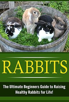 FREE TODAY    Amazon.com: Rabbits: The Ultimate Beginner's Guide to Raising Healthy Rabbits for Life! (Rabbits - Raising Rabbits - Rabbit Care - How to Care for Rabbits - Rabbit Nutrition - Indoor Pets) eBook: Karen Sutterin: Kindle Store