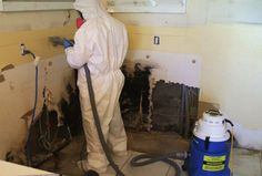 Got a Leak? Got Mold? Residential & Commercial Certified Mold Inspectors - 24/7 Services