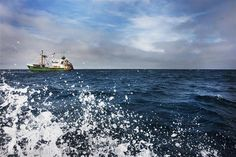 A Dutch fishing ship at the Cleaver Bank in the North Sea. Photographer: Greenpeace / Cris Toala Olivares