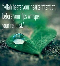 """Allah hears your hearts intention, before your lips whisper your request. Islamic Qoutes, Islamic Teachings, Muslim Quotes, Islamic Messages, Allah God, Allah Islam, Islam Muslim, Beautiful Islamic Quotes, All About Islam"