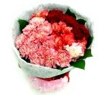 Flower bunch of fresh Carnation for anniversary. Send Flowers, Bunch Of Flowers, Unique Flowers, Fresh Flowers, Carnation Bouquet, Carnations, Tulips, Online Gift Shop, Online Gifts