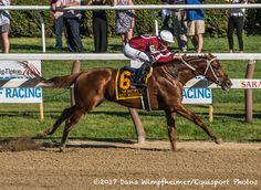 Gun Runner takes The Whitney 8/22/17