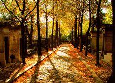 Père Lachaise cemetery, in the fall. Paris France