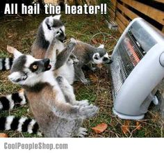 All hail the heater! | Cool People Shop
