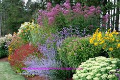 Perennials Flowers Gardens Layout - Bing Images #autumnflowergarden