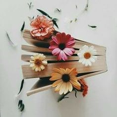 book, flowers, and vintage image&