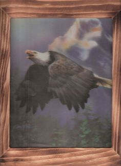 The soaring American Bald Eagle  with free shipping by OldTimeCountryCrafts, $9.50
